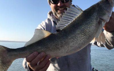 Missouri River Fishing Report- April 19th, 2021